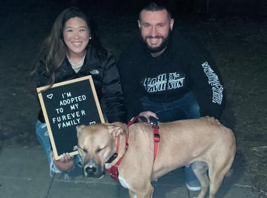 Look who got adopted 12.14.20